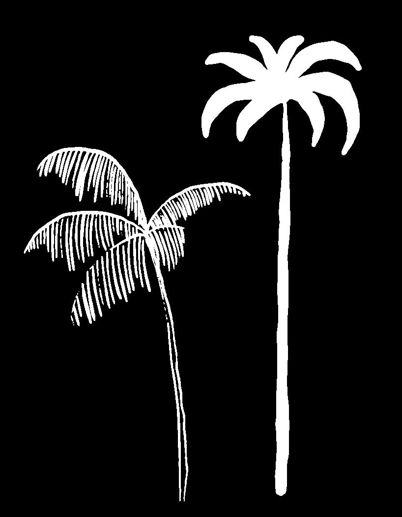 palm faq