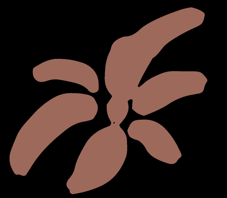 fleur-separateur-ocre