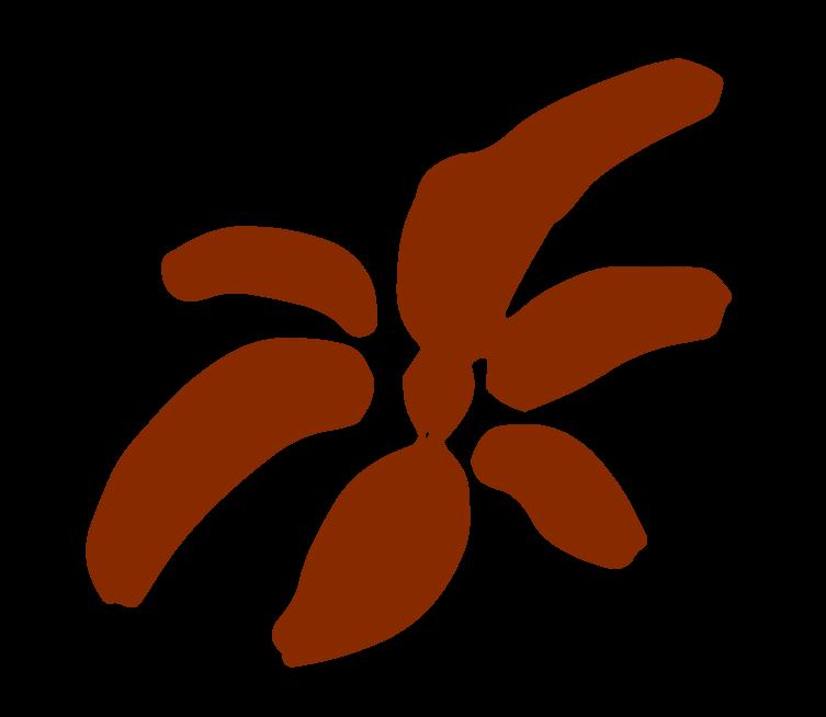 fleur-puce